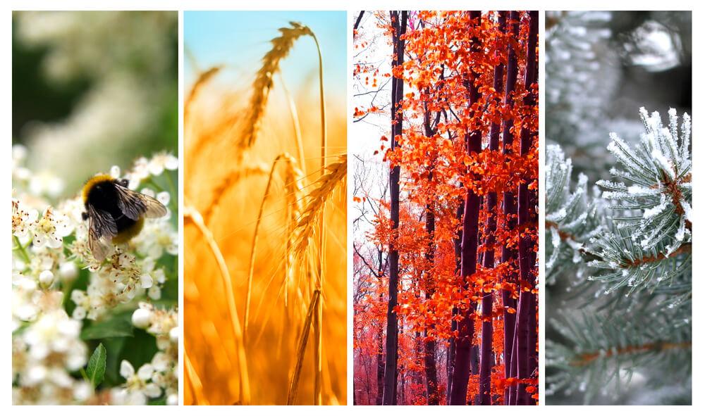 campagnes saisonnieres